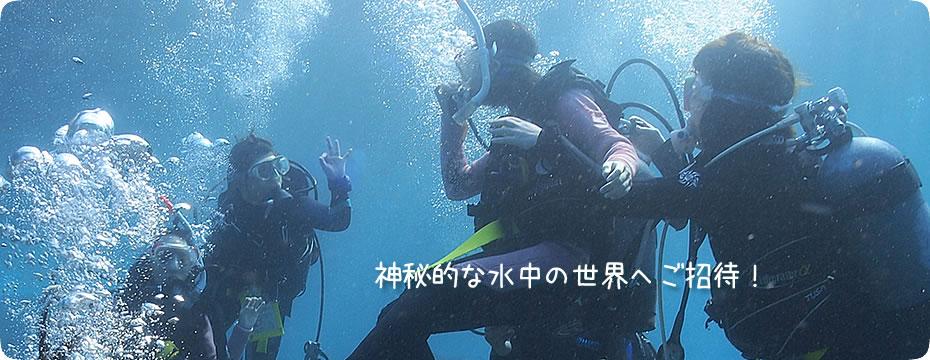 神秘的な水中の世界へご招待!